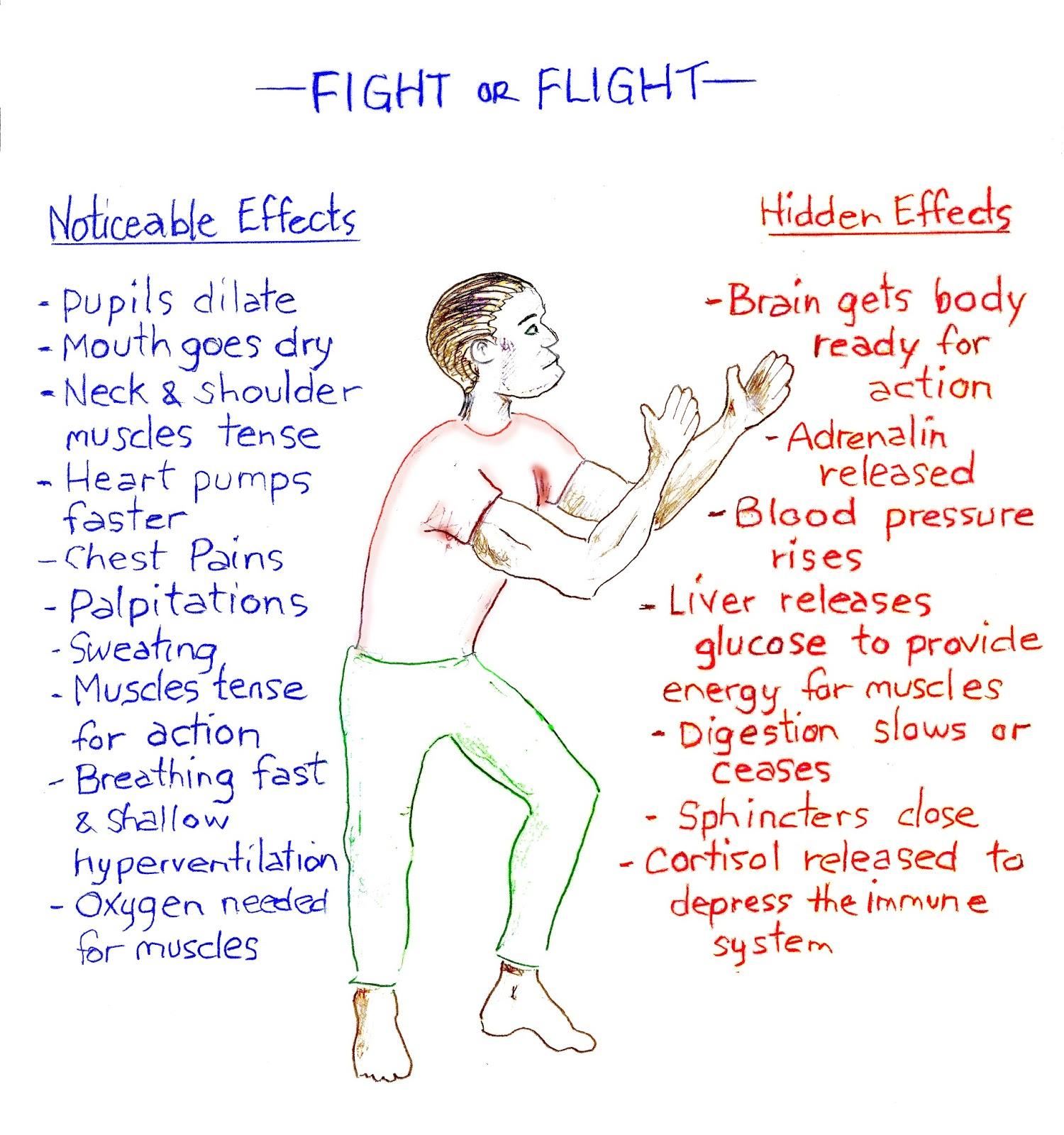 Fight_or_flight2